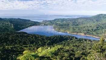 Coast and Rainforest Walk Full Day Tour