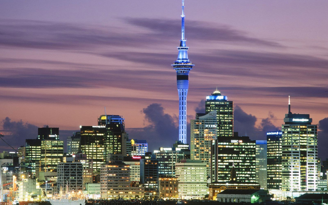 Full Day Auckland Cruise Ship Tour