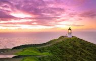 9 Day Ultimate North Island Escape Small Group Tour