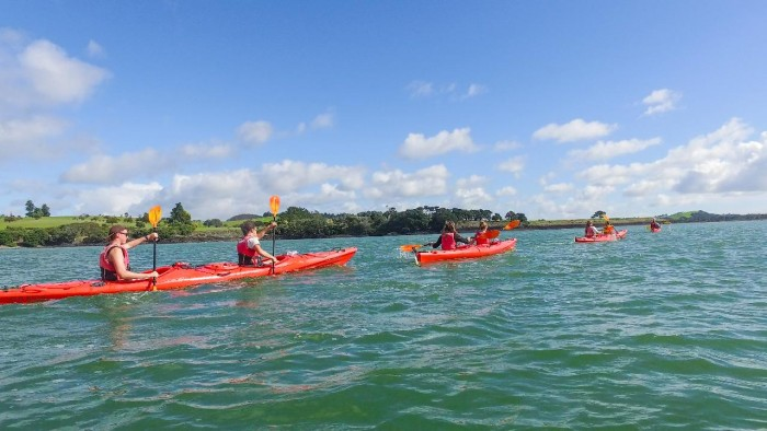 Bay of Islands Half Day Guided Kayak Tour