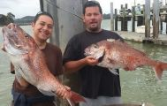 Full Day Private Bay of Islands Fishing Charter