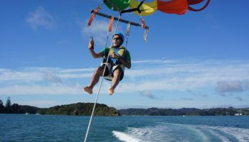 Single Bay of Islands Parasail Flight