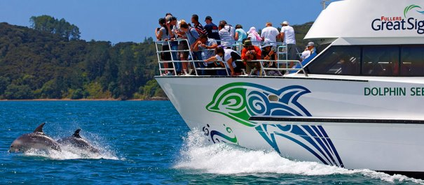 Tours from Auckland