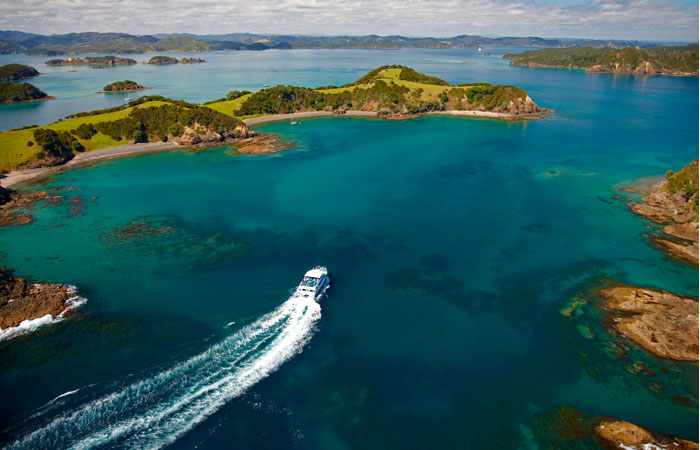 Bay of Islands and Hole in the Rock Dolphin Cruise