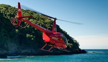 Coromandel Coast and Dine Scenic Flight (3 hour)