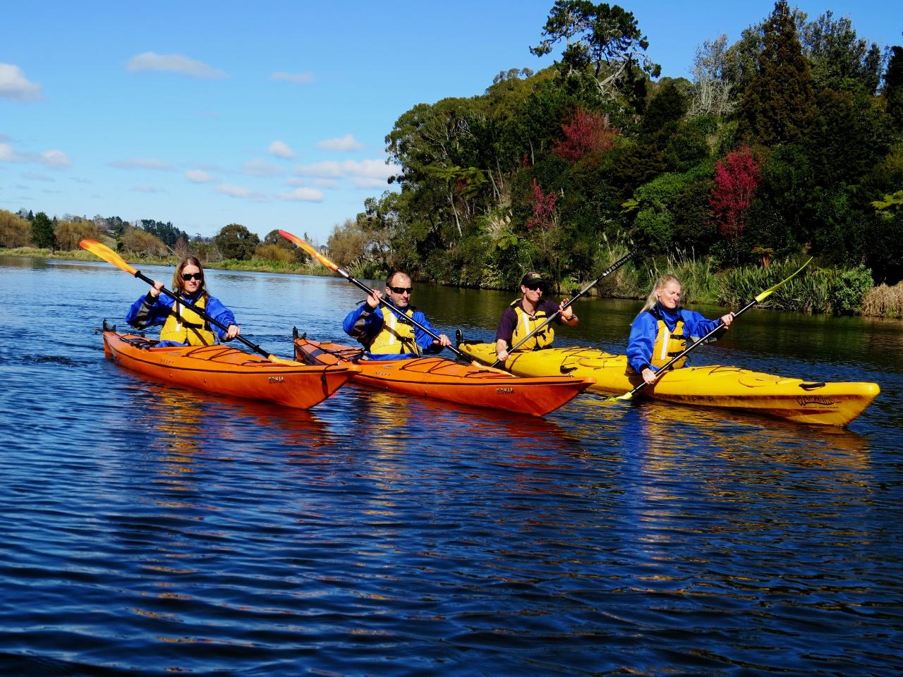 Wairoa River Guided Kayak Tour