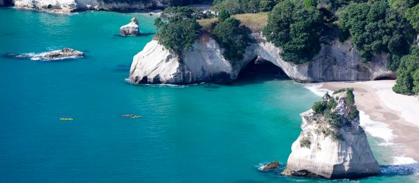 Coromandel Full Day Tour from Auckland