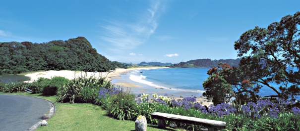 6 Day Coromandel Coast Self Drive