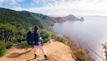 7 Day Coromandel Coastal Charm Hiking Tour