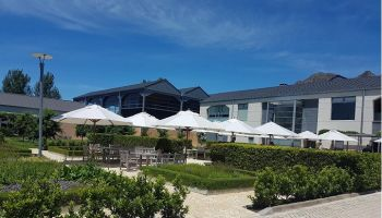 Napier City & Taste of Hawke's Bay Wine Country Private Tour with Devonshire Tea