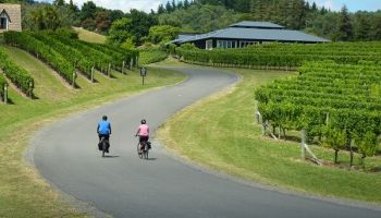 Multi-Day Cycling Tours