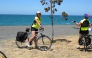 3 Day Hawkes Bay Leisurely Pathways Self Guided Bike Tour