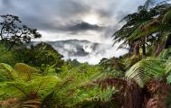 Volcanoes and Rainforest Guided Tour