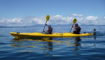 Maori Rock Carvings Kayaking & Mountain Biking Combo