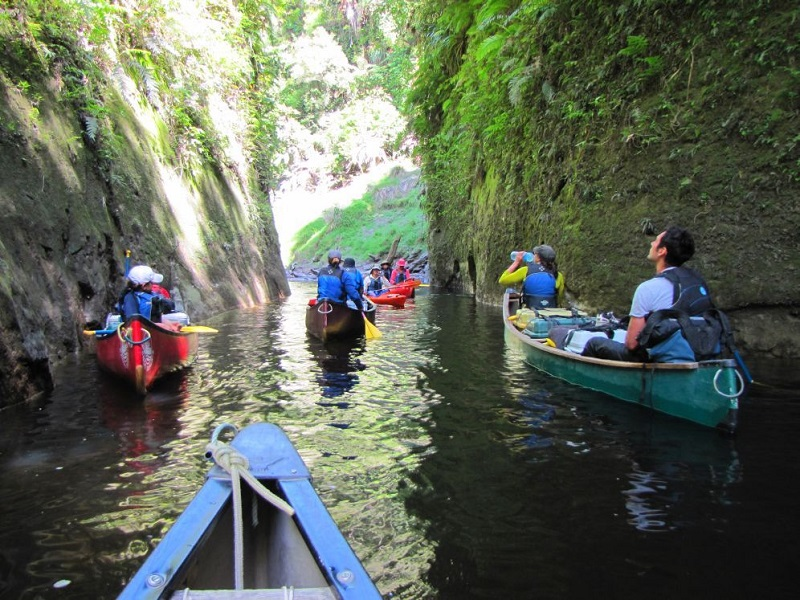5 Day Guided Whanganui National Park Canoe Safari