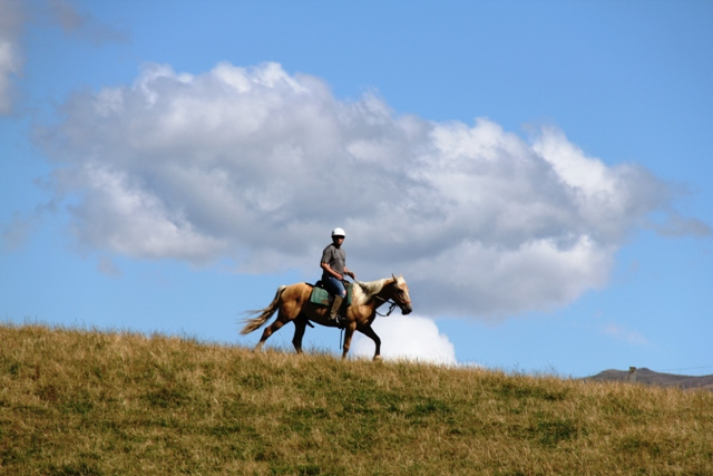 Home on the Range Horse Riding Holiday (2-4 Days)
