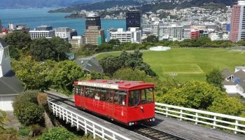 Private Wellington Full Day Tour