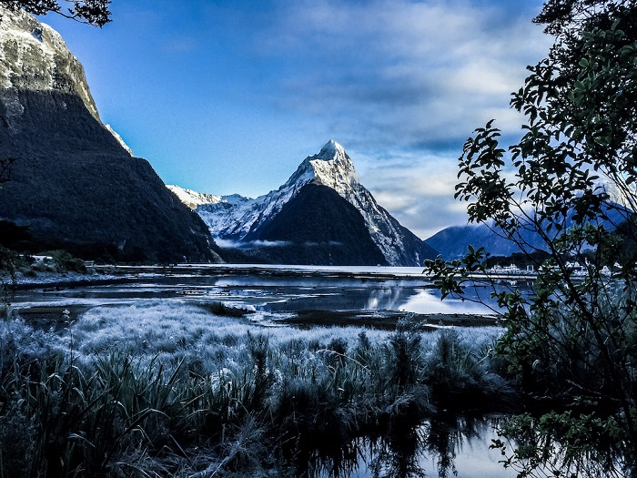 Winter Milford Sound and Glaciers: Fly, Cruise, Fly