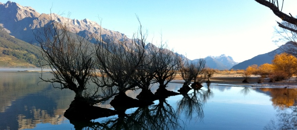 Paradise Safari Glenorchy Tour