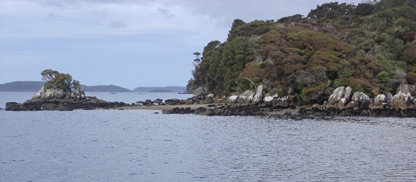 6 Day Stewart Island Discovery Expedition