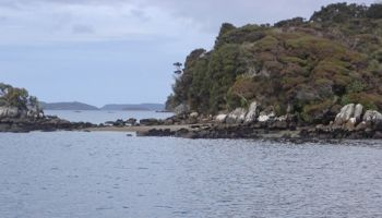 6 Day Stewart Island Discovery/Conservation Expedition