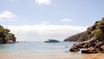 Ulva Island Explorer (with Paterson Inlet Cruise)