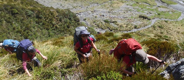Mt Aspiring National Park Hikes