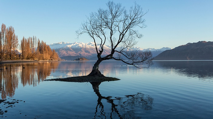 Experience Wanaka Small Group Tour from Queenstown