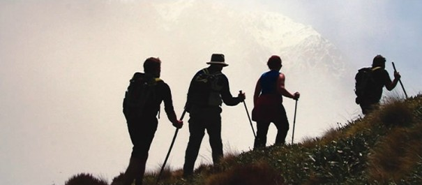 Kaikoura Wilderness Walk - 3 Day
