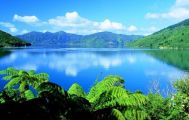 4 Day Queen Charlotte Track 5 Star Experience Guided Walk