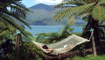 4 Day Queen Charlotte Track Premier Guided Walk