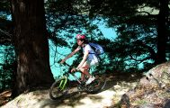 "Queen Charlotte Track Small 15"" Bike Rental"