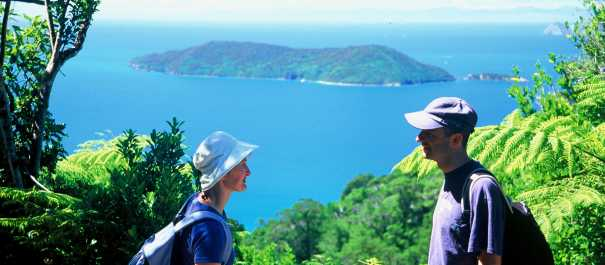 Overlooking Motuara Island on the Queen Charlotte Track
