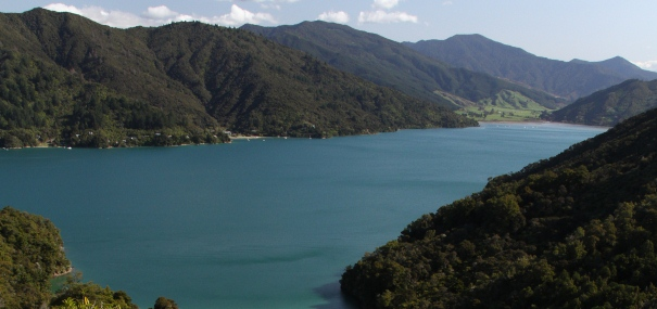 4 Day Queen Charlotte Track Standard Gourmet Guided Walk