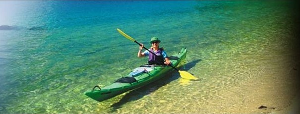 Queen Charlotte Sound Full Day Guided Kayak