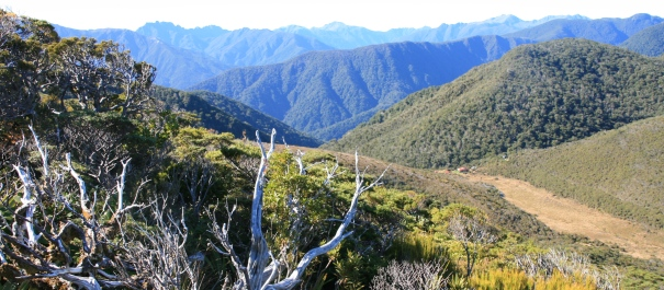 Heaphy Track Independent Walk Package