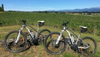 1 Day Guided Moutere Hills E-bike Winery Tour