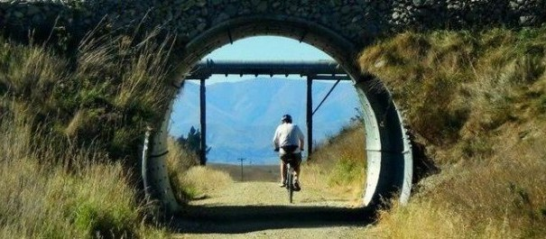 5 Day Otago Rail Trail Mountains to Sea - Guided