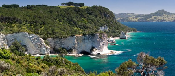 4 Day Coromandel Explorer Lodge Based