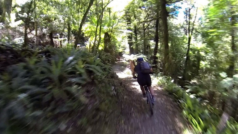 1 Day Coppermine Loop Mountain Bike Trail