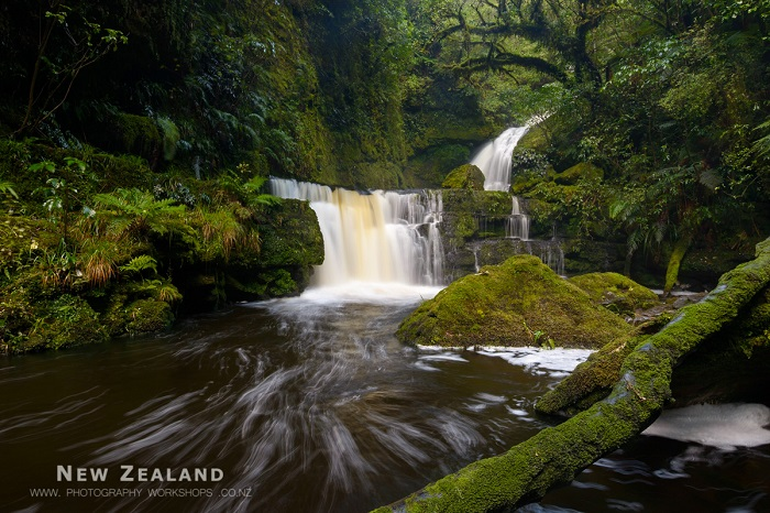 7 Days Wild South Island Photo Tour
