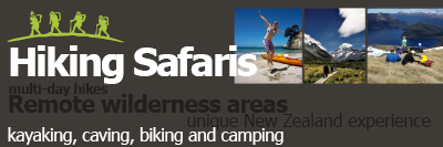 Hiking Safaris