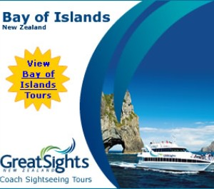 Great Sights Bay of Islands Tours